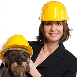 Animal Protection, Welfare and Services
