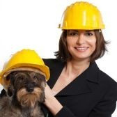 Animal-Protection-Welfare-Services