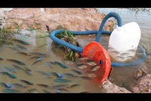Believe This Fishing? Unique Fish Trapping System Using Long Pipe & Big Plastic Bottle By Smart Boy